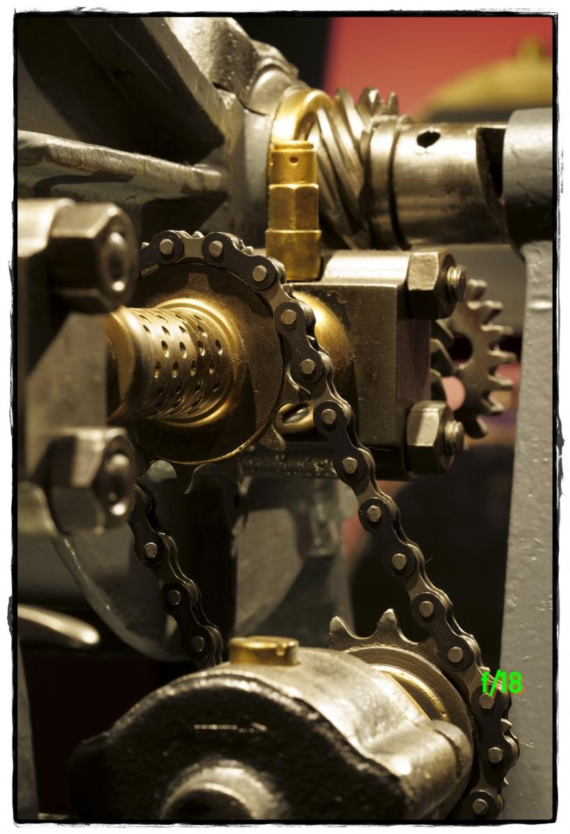 DSC8379_PSMS-f18-closeup