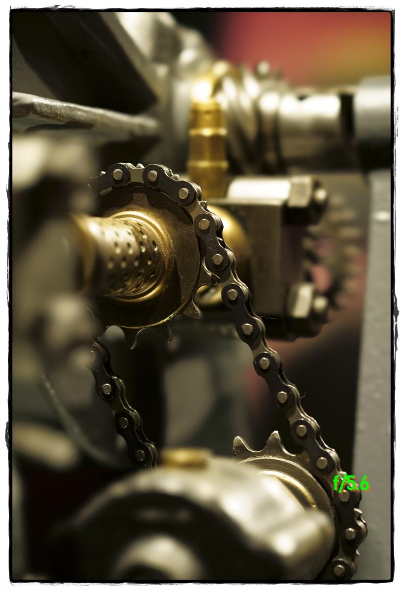 DSC8383_PSMS-f5.6-closeup